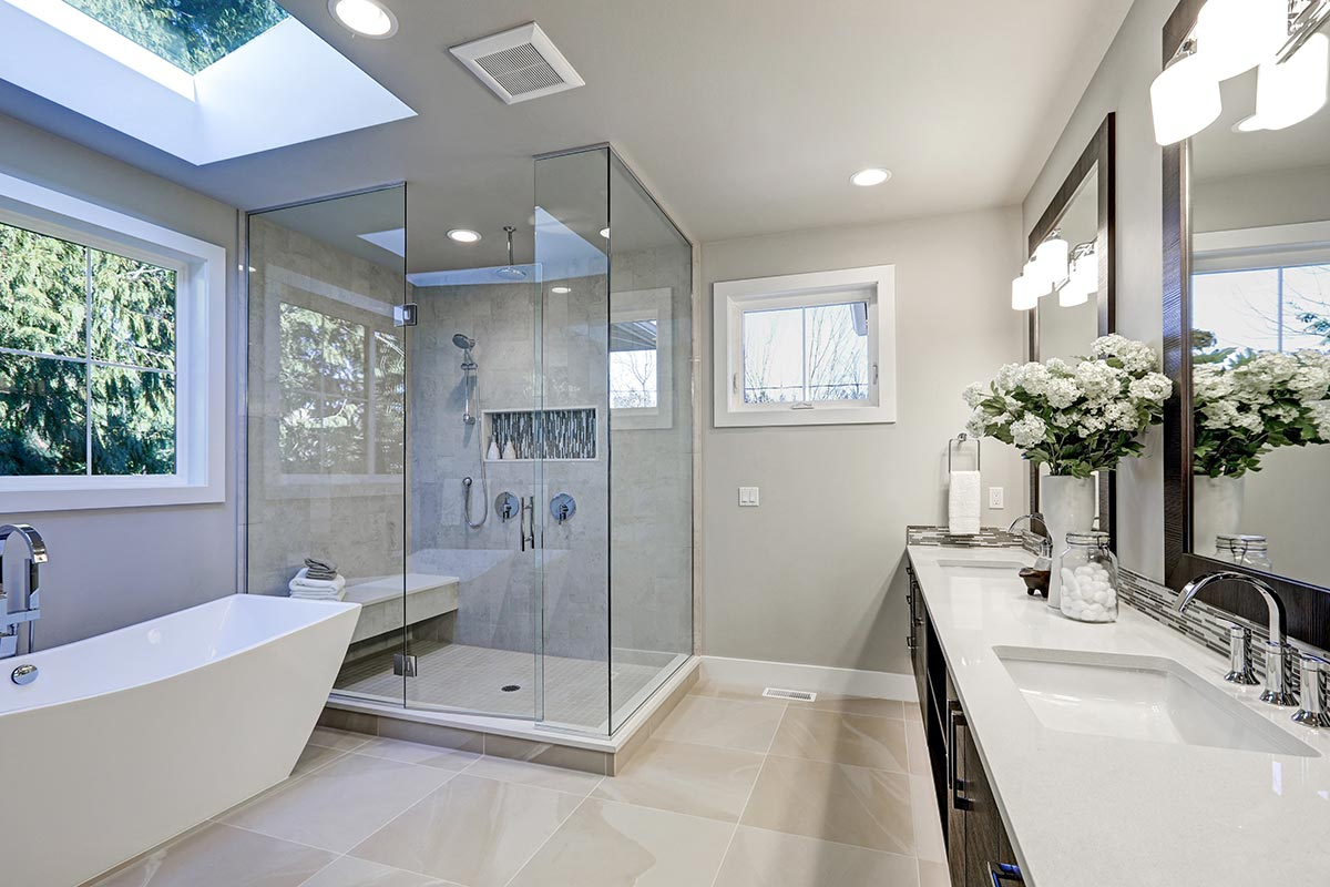 Modern Shower Door and Enclosure